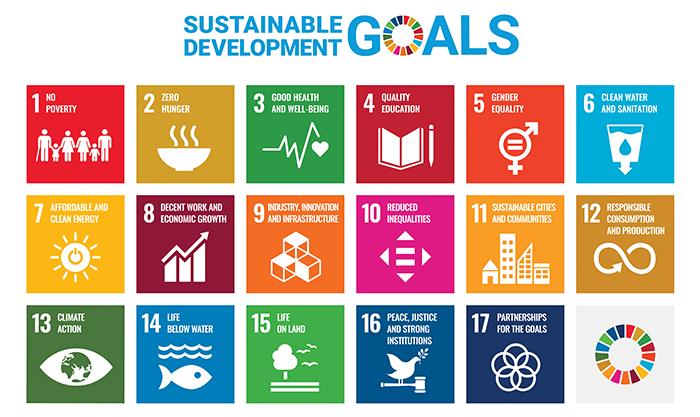 SDG Grid
